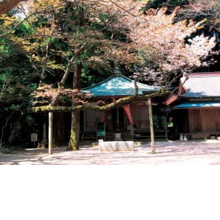開鏡山観音寺/1月:湯立て神楽