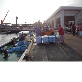 湊漁業協同組合/地引き網漁
